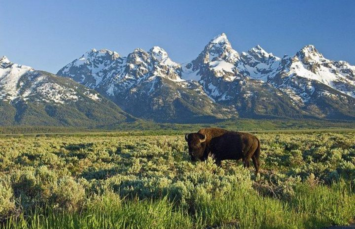 Snuggled at the base of the mighty Teton Mountain Range in Northwest Wyoming, the valley of Jackson Hole offers an exhilarating taste of the Wild West in more ways than one.